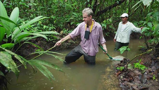 Amazon Altıncı Duyu (Electric Amazon)   Belgesel