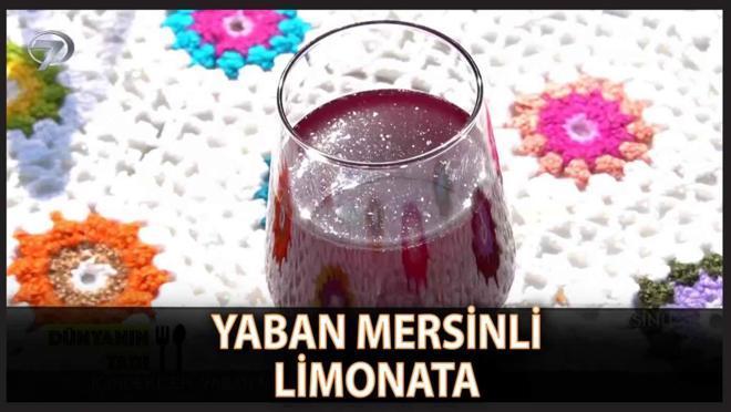 Serinleten Lezzet Yaban Mersinli Limonata Tarifi